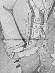 R. 246 Dibujo del novio